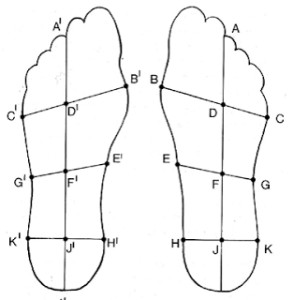 bewegingsvoorkeur in rechtsboven kwadrant –evenwicht